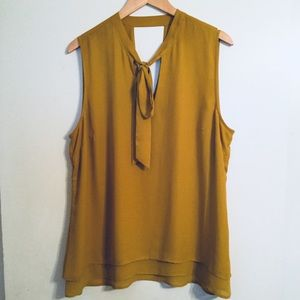 DR2 | Daniel Rainn Mustard Neck Tie Blouse (XL)
